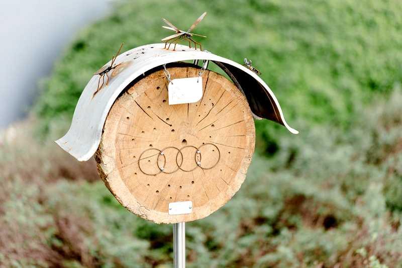 Audi i ekologia